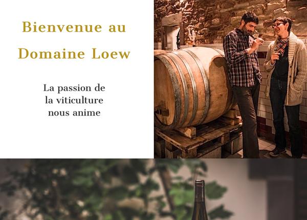Nouveau site pour le Domaine Loew
